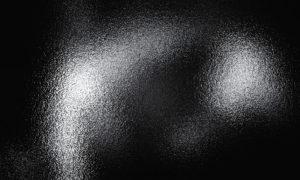 DSC07226 aa 300x180 Gallery 18 2